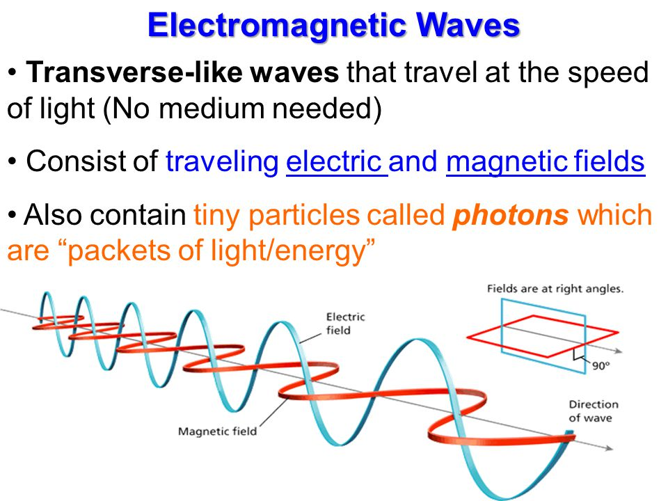 Transverse Electromagnetic Cell Ppt P1b Revision Template