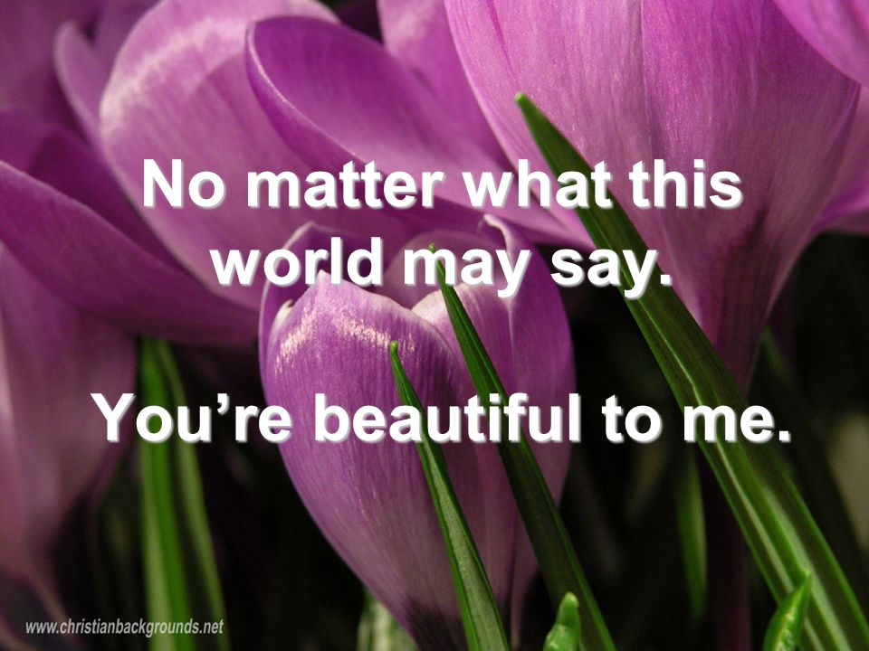 No matter what this world may say. You're beautiful to me.