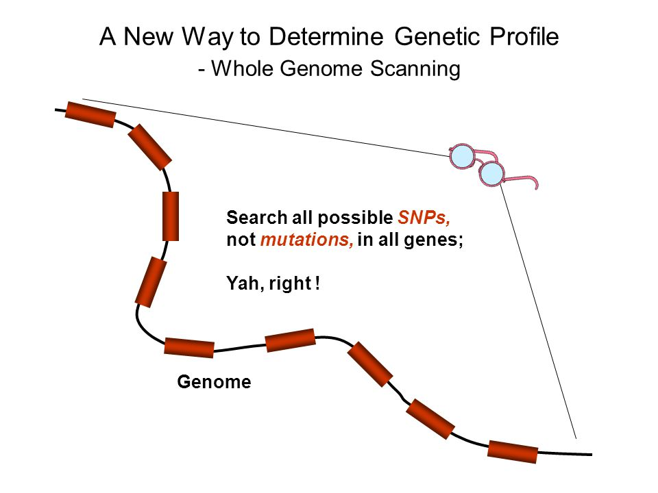 A New Way to Determine Genetic Profile - Whole Genome Scanning