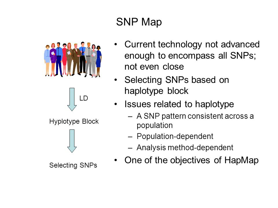 SNP Map Current technology not advanced enough to encompass all SNPs; not even close. Selecting SNPs based on haplotype block.