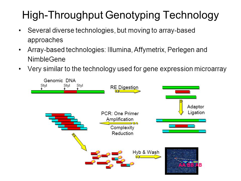High-Throughput Genotyping Technology