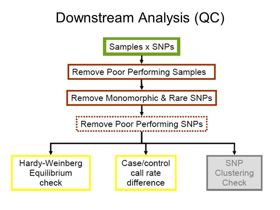 Downstream Analysis (QC)