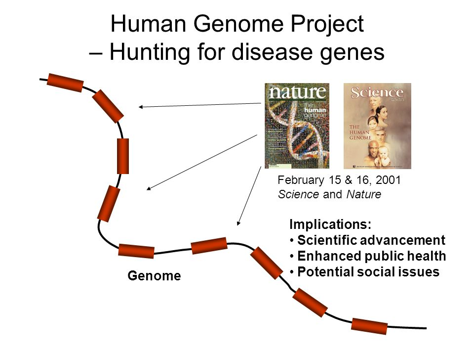 An analysis of the human genome project research program