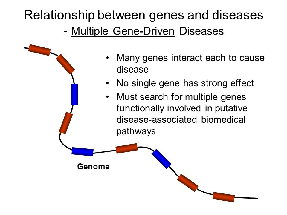 Relationship between genes and diseases - Multiple Gene-Driven Diseases