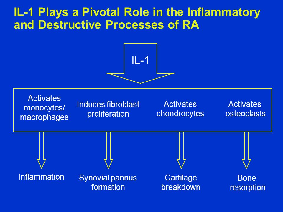IL-1 Plays a Pivotal Role in the Inflammatory and Destructive Processes of RA
