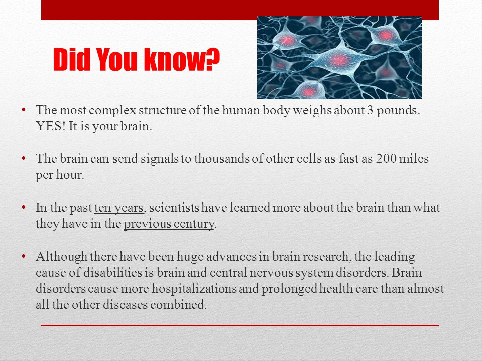 Did You know The most complex structure of the human body weighs about 3 pounds. YES! It is your brain.