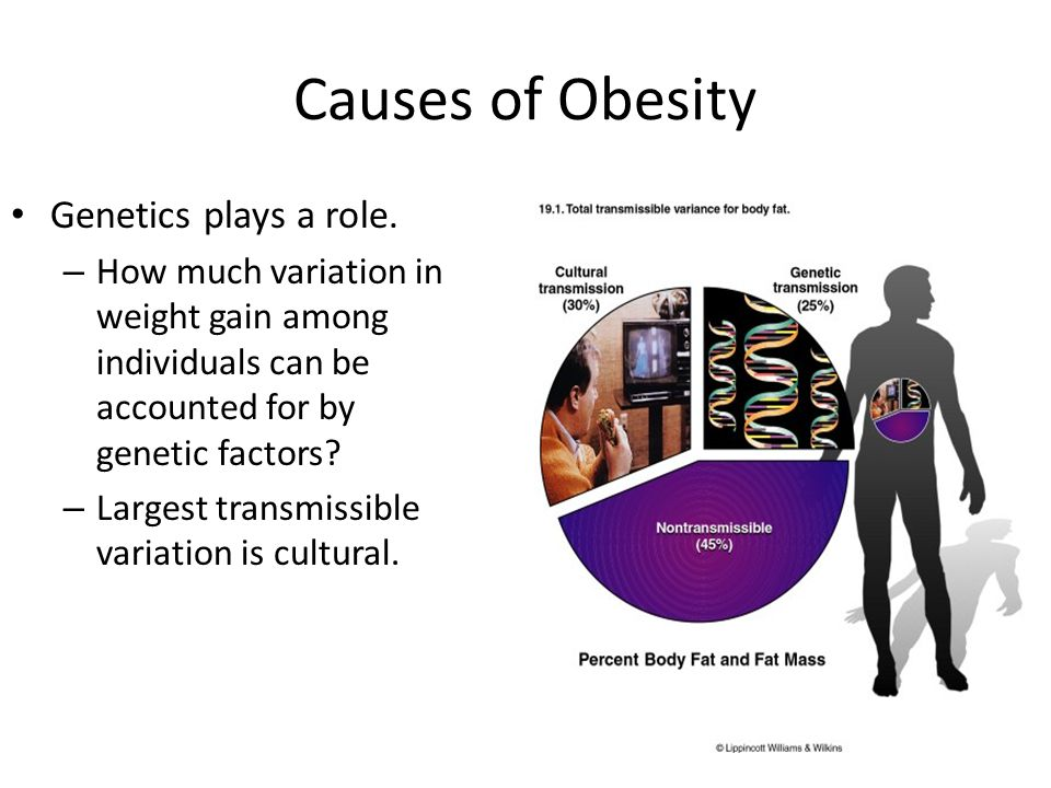 Causes of Obesity Genetics plays a role.