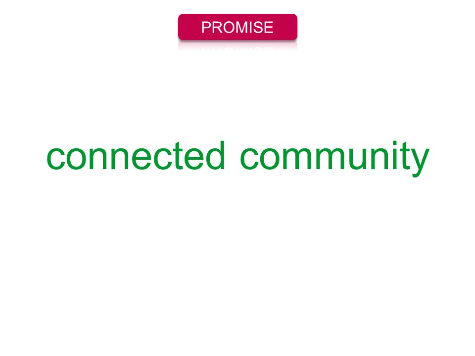 PROMISE connected community