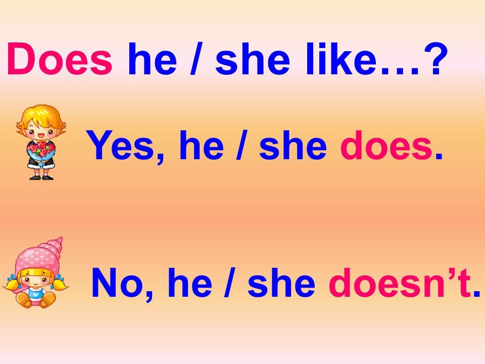 Does he / she like… Yes, he / she does. No, he / she doesn't.