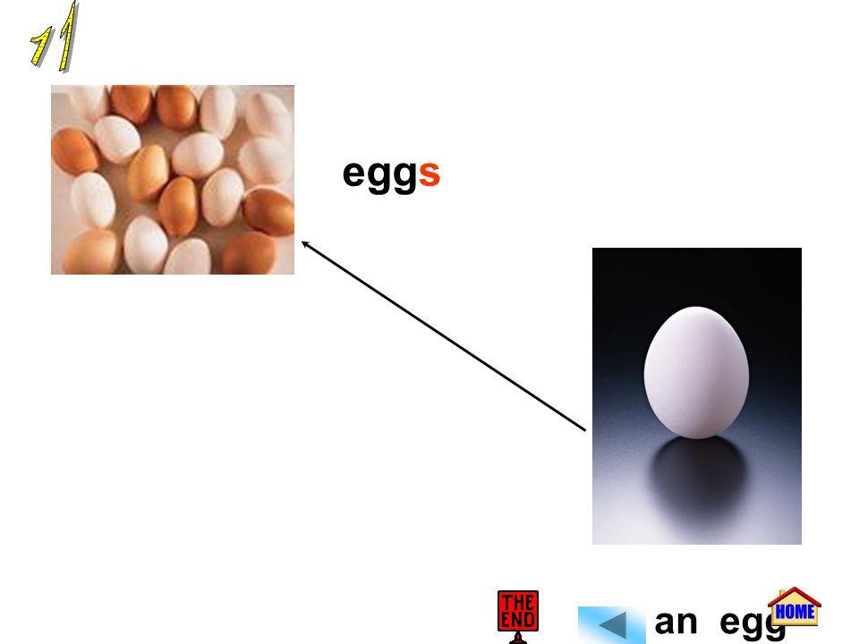 11 eggs an egg