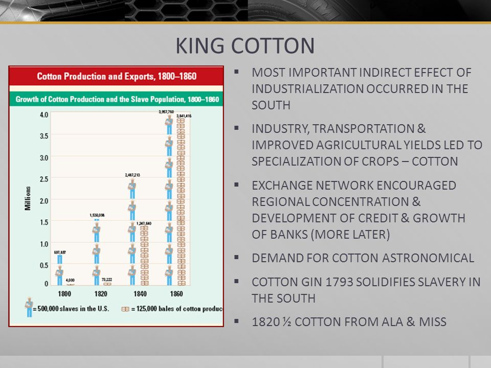 KING COTTON MOST IMPORTANT INDIRECT EFFECT OF INDUSTRIALIZATION OCCURRED IN THE SOUTH.