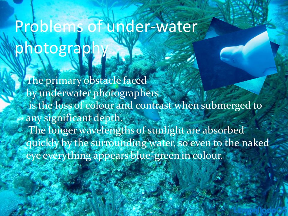 Problems of under-water photography