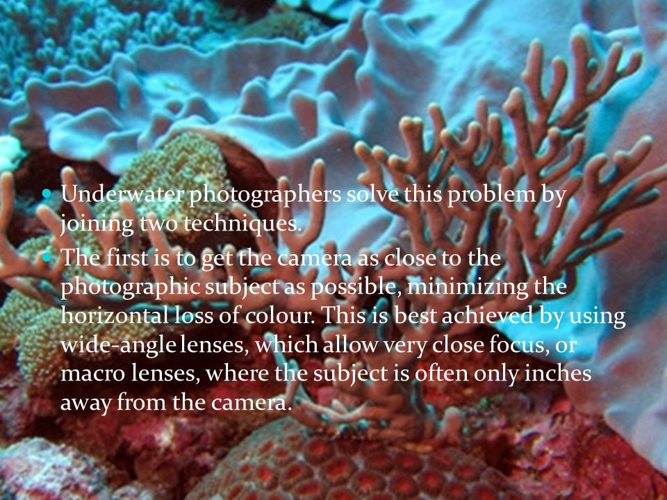 Underwater photographers solve this problem by joining two techniques.