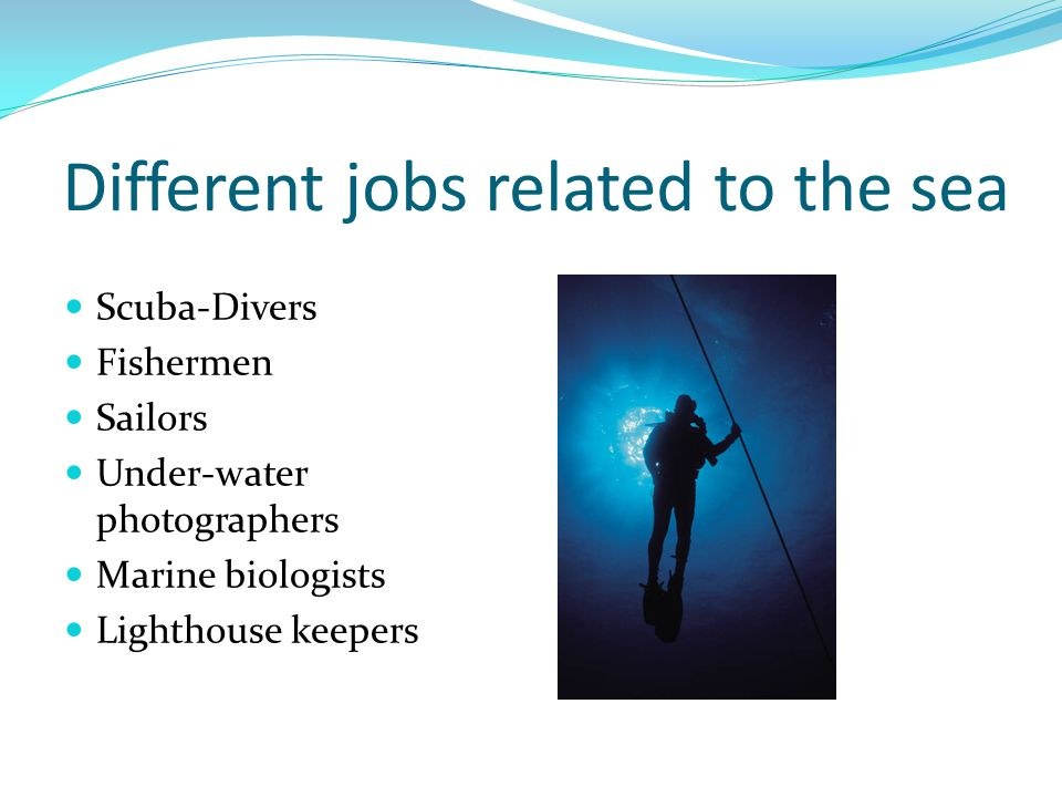Different jobs related to the sea