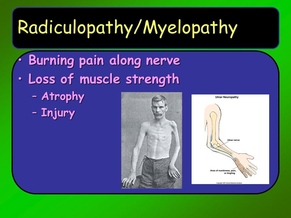 Radiculopathy/Myelopathy