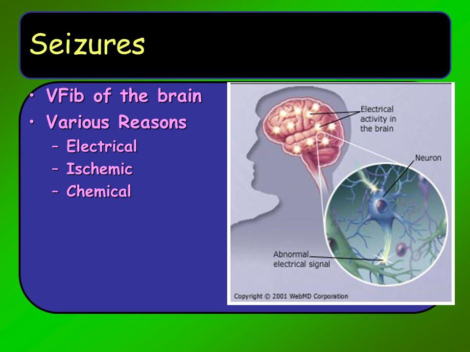 Seizures VFib of the brain Various Reasons Electrical Ischemic