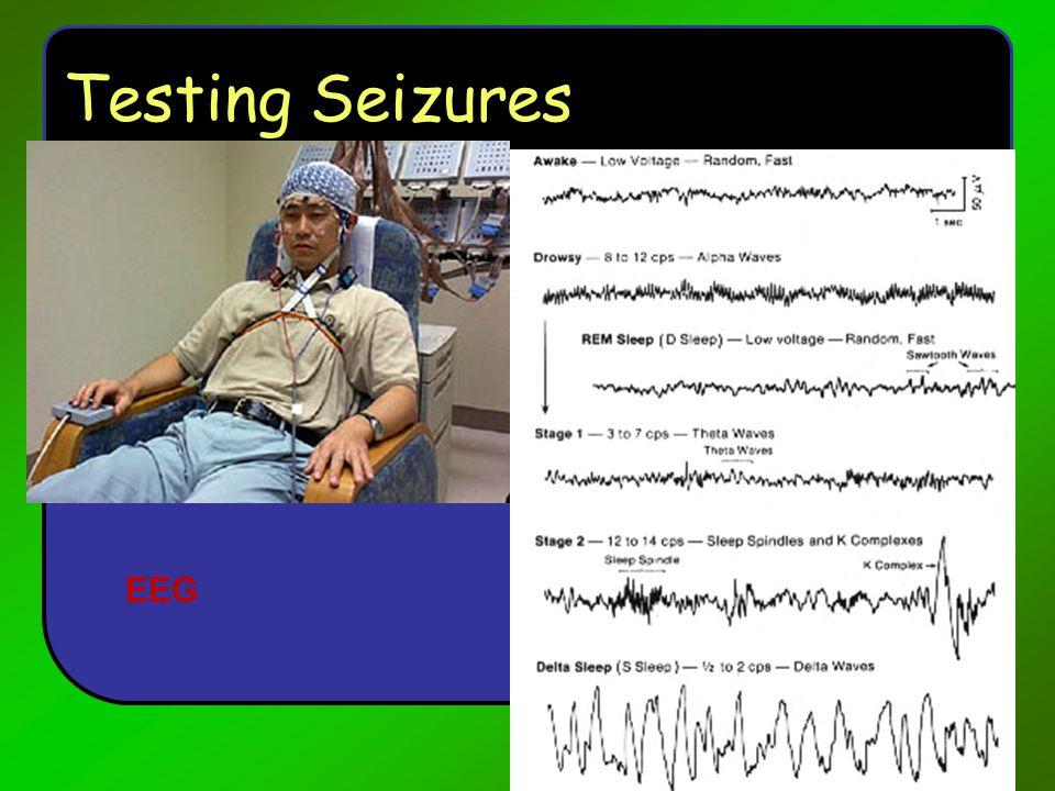 Testing Seizures EEG EEG
