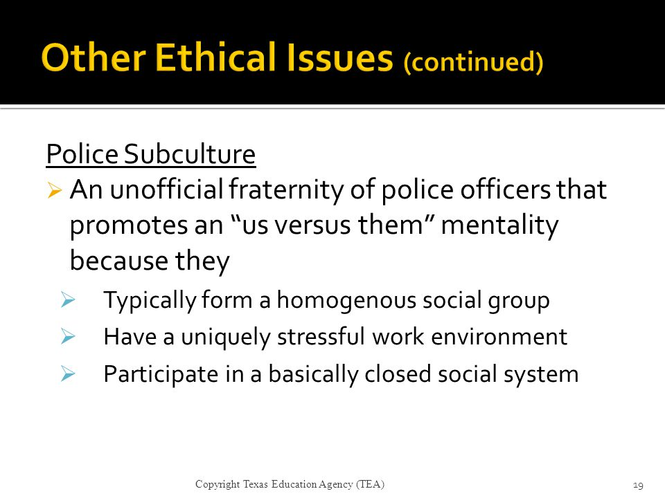 Other Ethical Issues (continued)