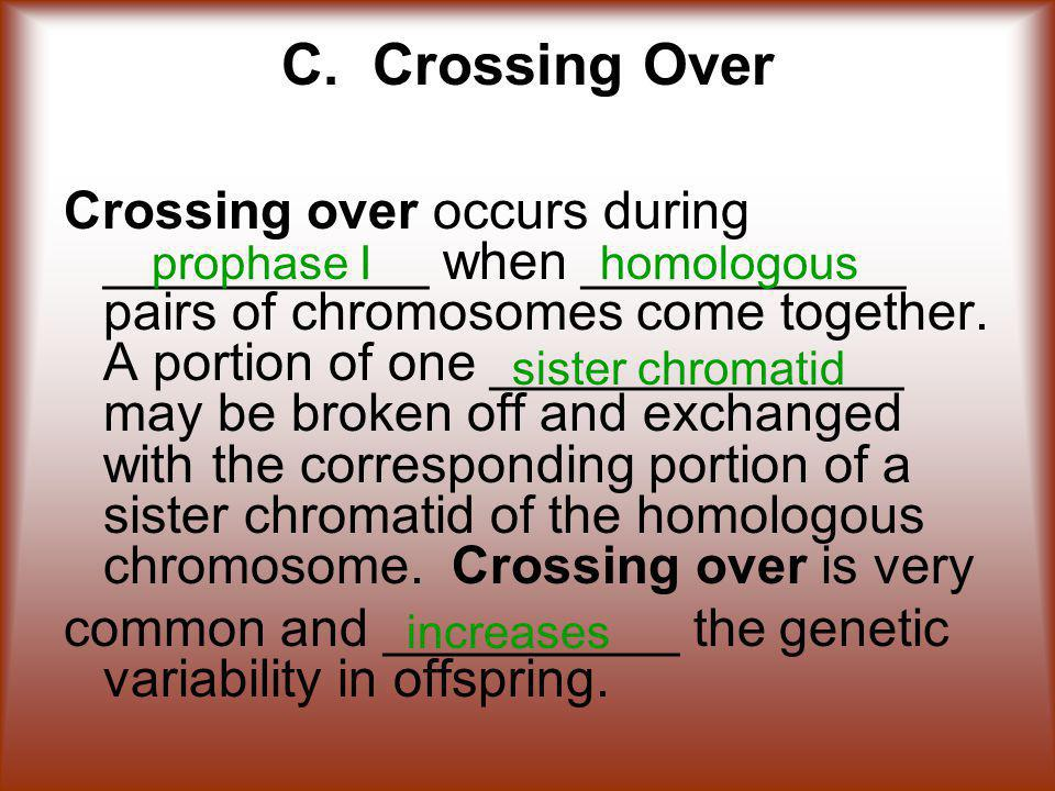 C. Crossing Over