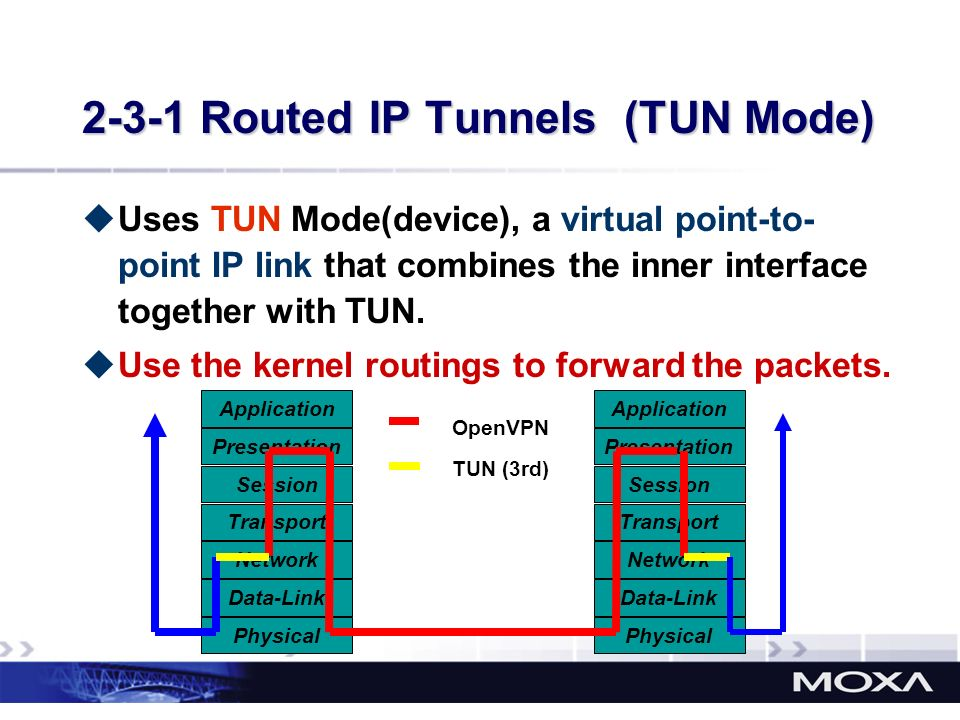 2-3-1 Routed IP Tunnels (TUN Mode)
