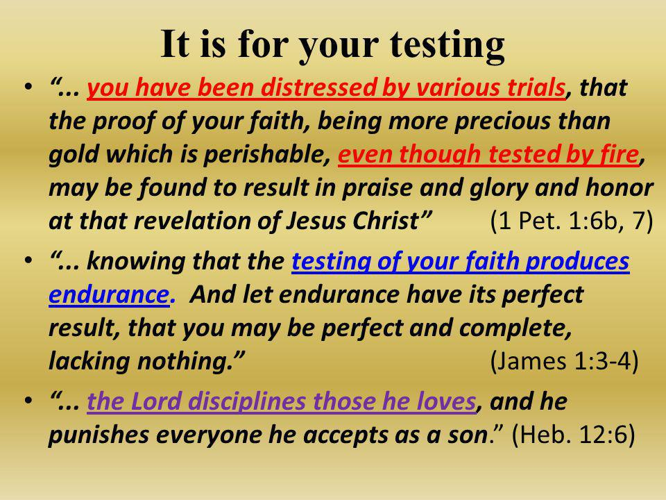 It is for your testing