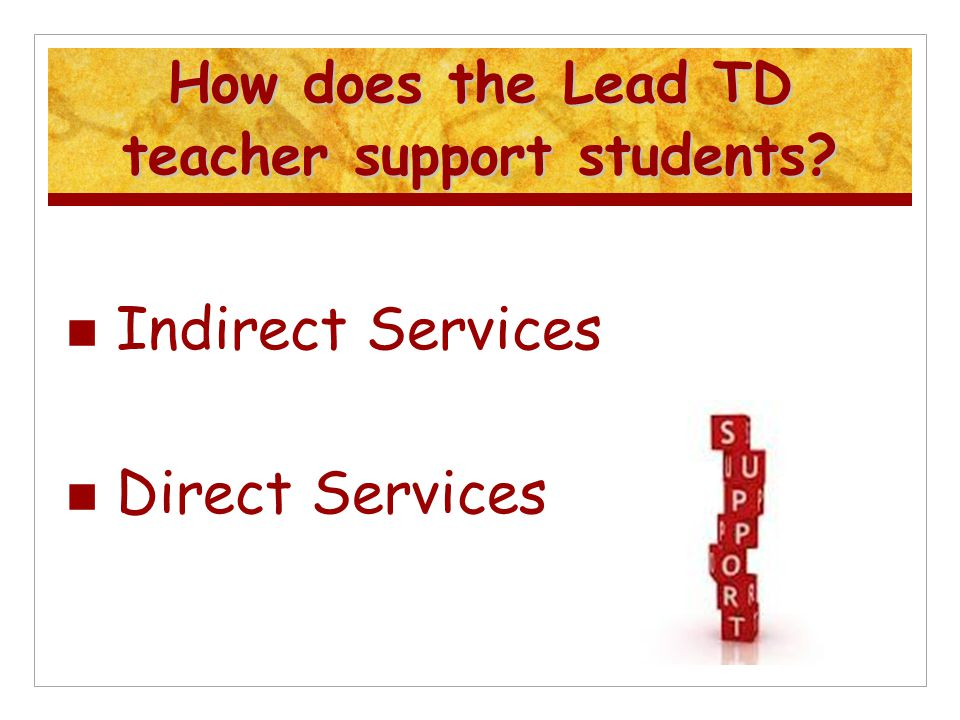 How does the Lead TD teacher support students