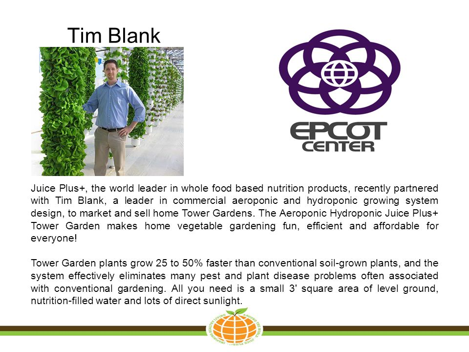 Tim Blank
