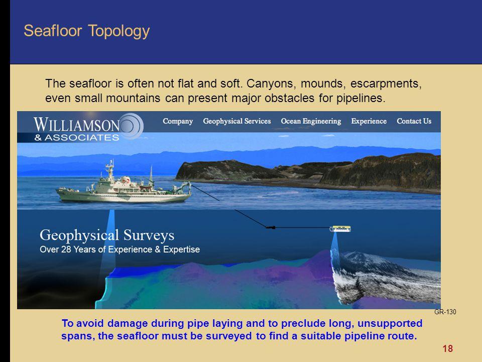Seafloor Topology