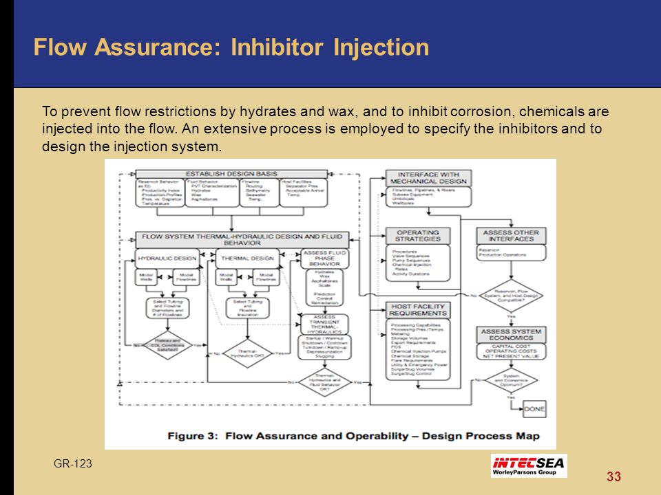 Flow Assurance: Inhibitor Injection