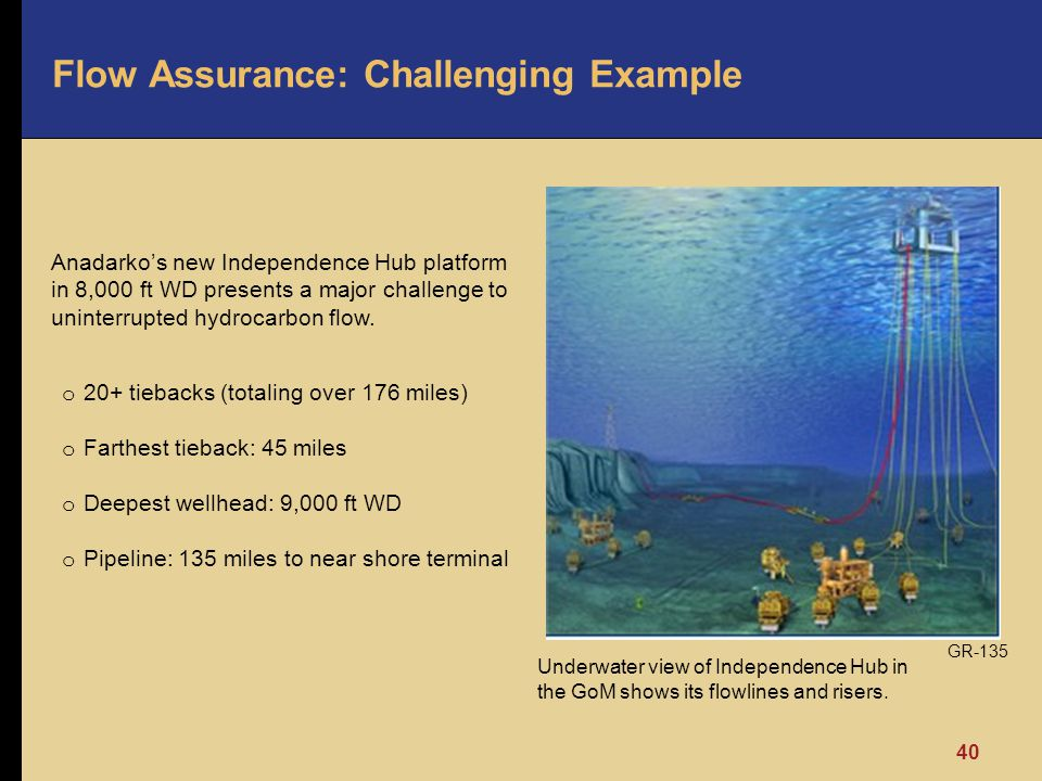 Flow Assurance: Challenging Example