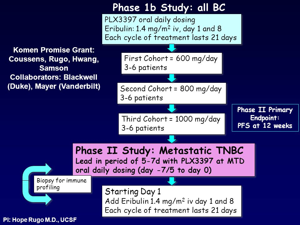Phase II Study: Metastatic TNBC