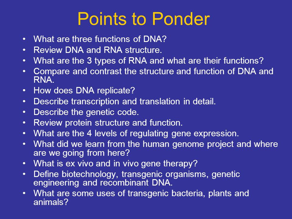 Points to Ponder What are three functions of DNA
