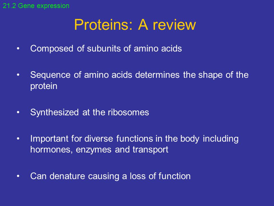 Proteins: A review Composed of subunits of amino acids