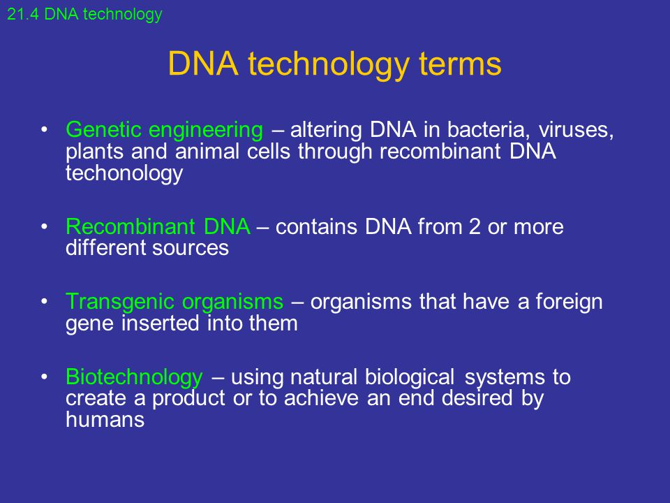 21.4 DNA technology DNA technology terms.