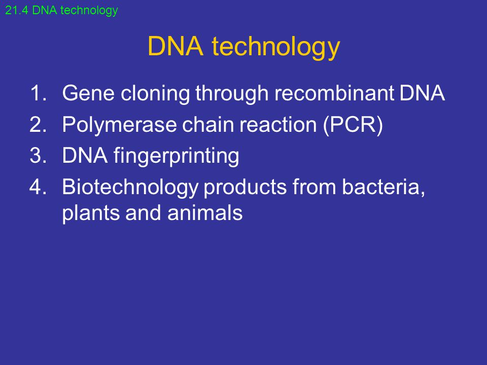 DNA technology Gene cloning through recombinant DNA