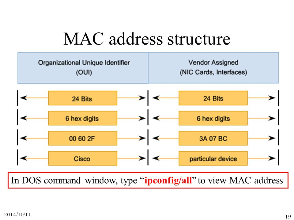 MAC address structure In DOS command window, type ipconfig/all to view MAC address 2017/4/6