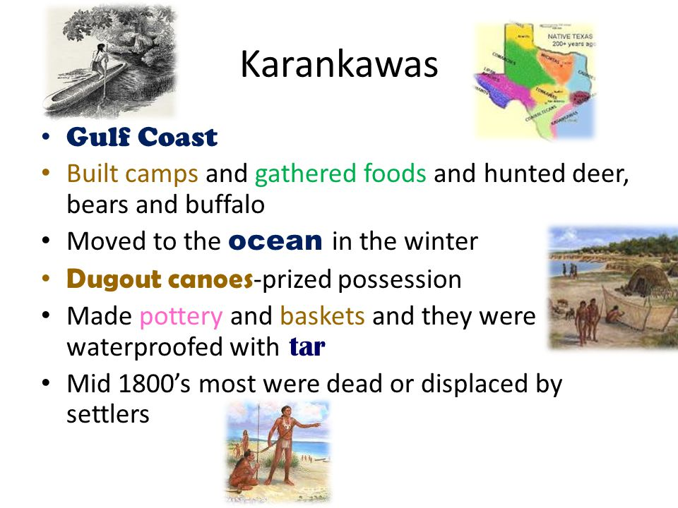 Karankawas Gulf Coast. Built camps and gathered foods and hunted deer, bears and buffalo. Moved to the ocean in the winter.