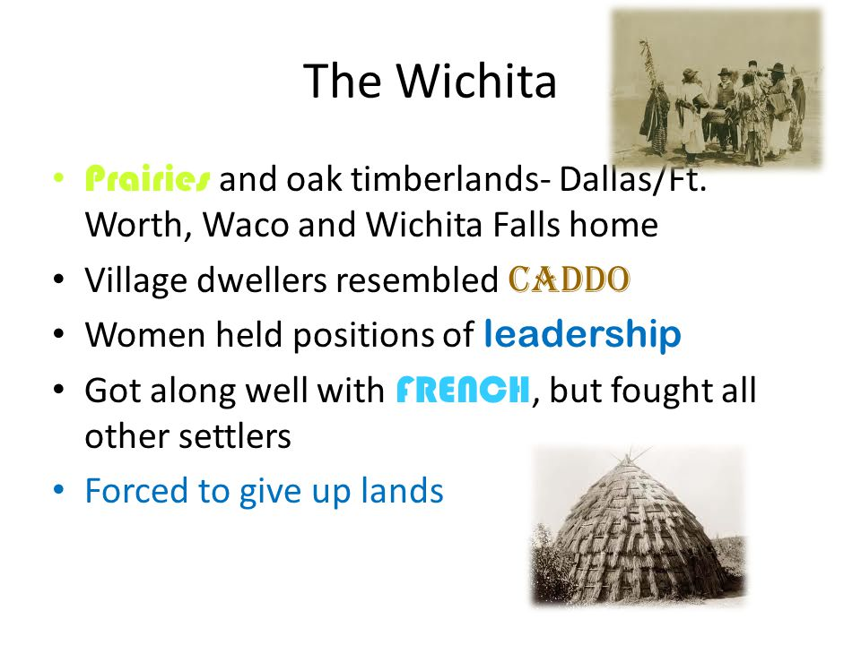 The Wichita Prairies and oak timberlands- Dallas/Ft. Worth, Waco and Wichita Falls home. Village dwellers resembled Caddo.