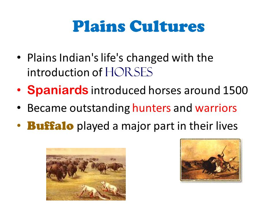 Plains Cultures Plains Indian s life s changed with the introduction of horses. Spaniards introduced horses around 1500.