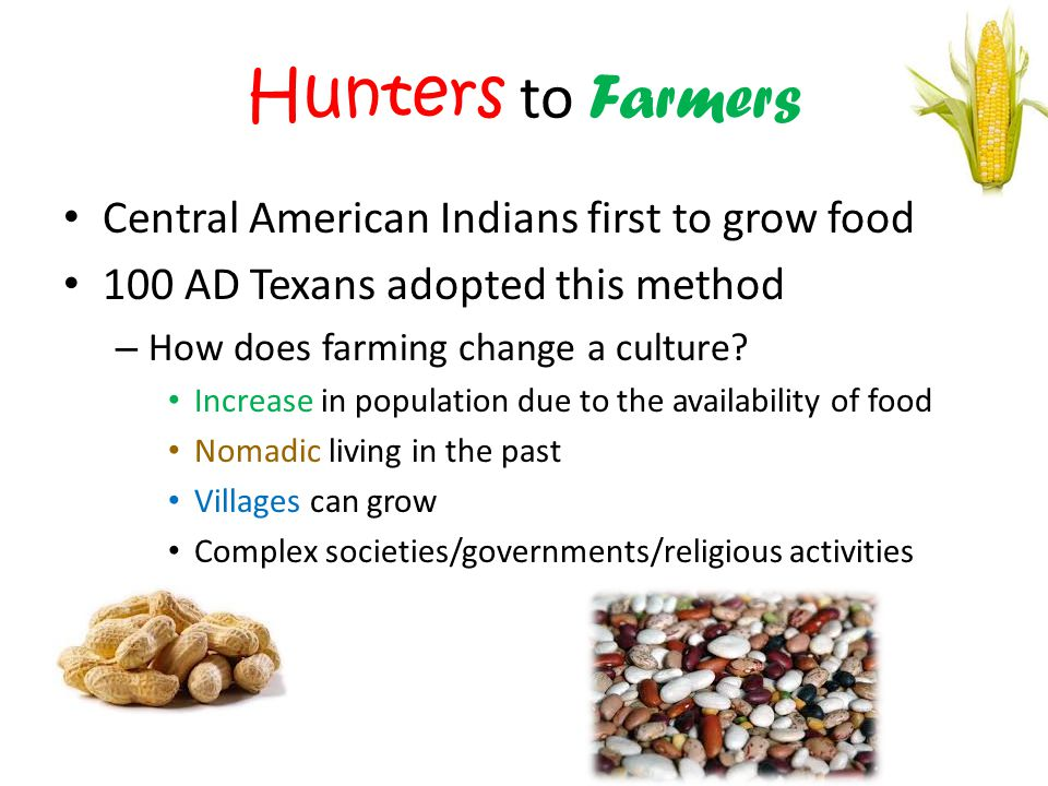 Hunters to Farmers Central American Indians first to grow food