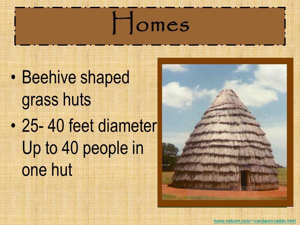 Homes Beehive shaped grass huts