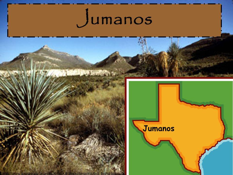 Jumanos Jumanos http://www.tpwd.state.tx.us/kids/about_texas/regions/big_bend/big_kids/