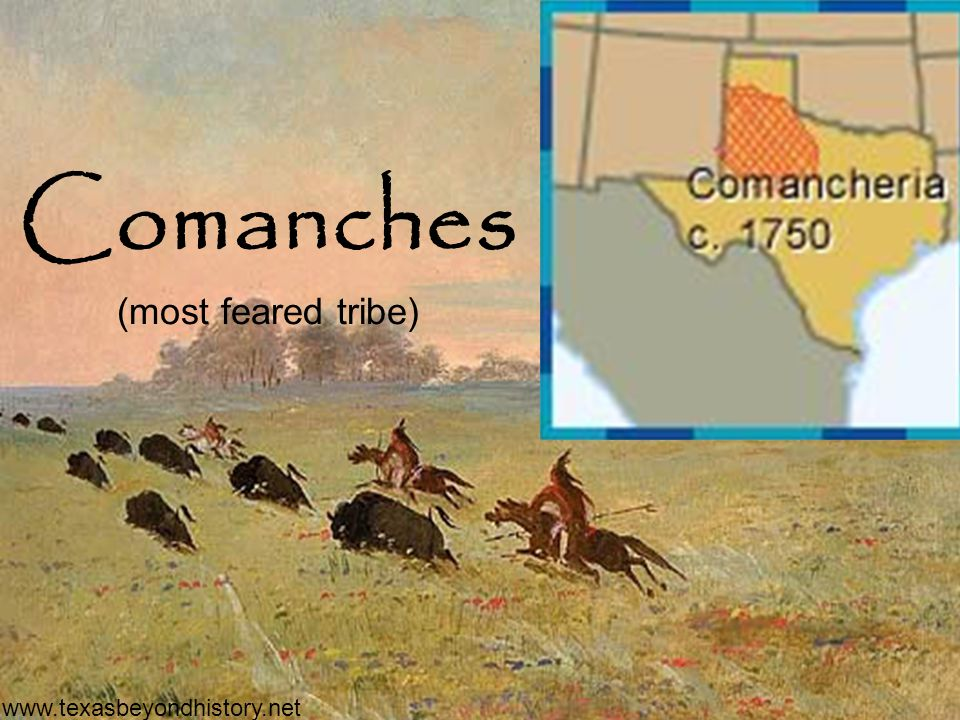Comanches (most feared tribe)