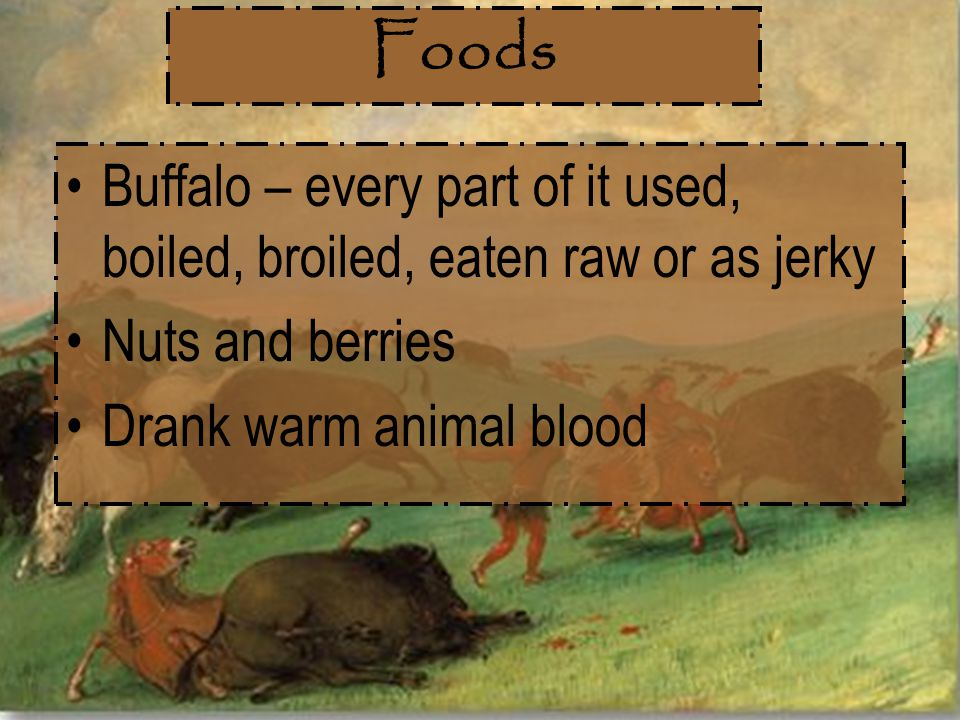 Foods Buffalo – every part of it used, boiled, broiled, eaten raw or as jerky.