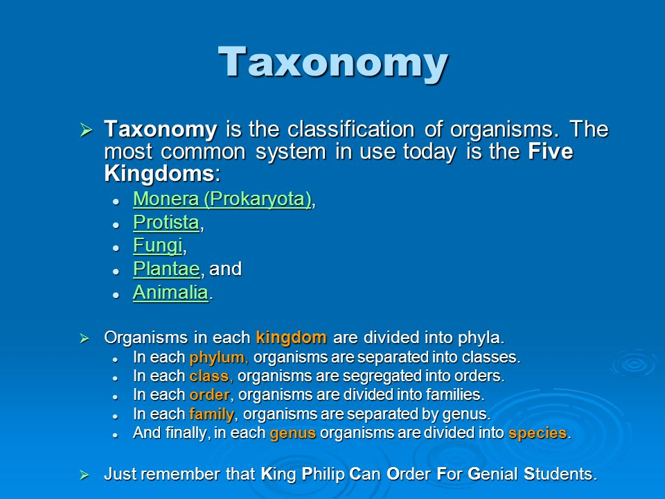 Taxonomy Taxonomy is the classification of organisms. The most common system in use today is the Five Kingdoms: