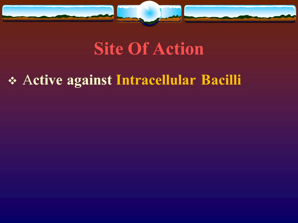 Site Of Action Active against Intracellular Bacilli