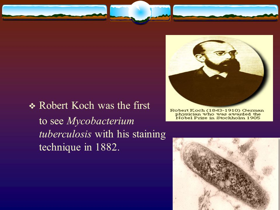 Robert Koch was the first