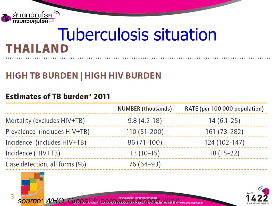 Tuberculosis situation