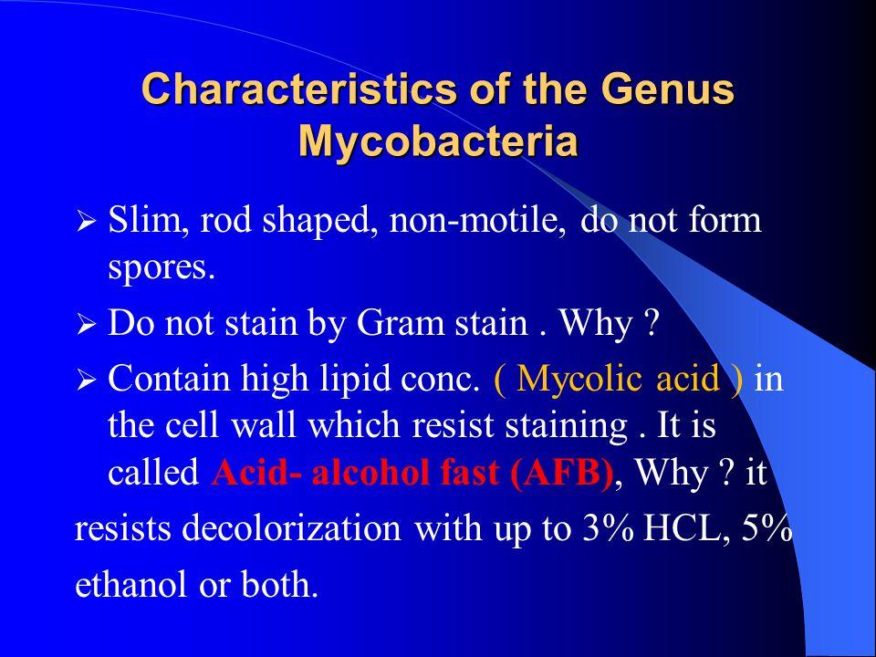 Characteristics of the Genus Mycobacteria