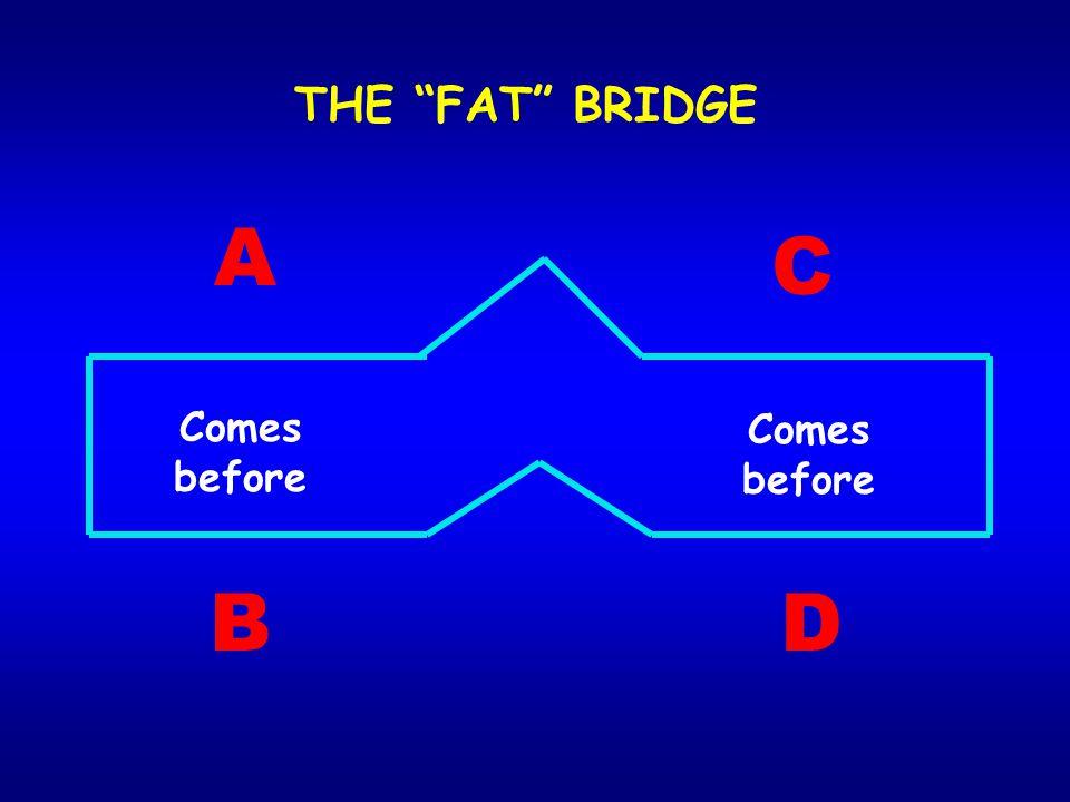 THE FAT BRIDGE A C Comes before Comes before B D